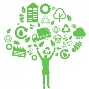 Logo de Natura Ingenium