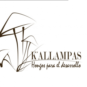 Logo de K'allampas