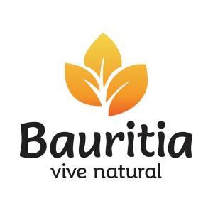 Logo de BAURITIA
