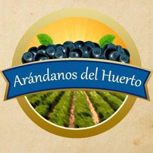 Logo de Arándanos del Huerto