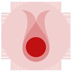 Logo de Vera Ciclos Sostenibles
